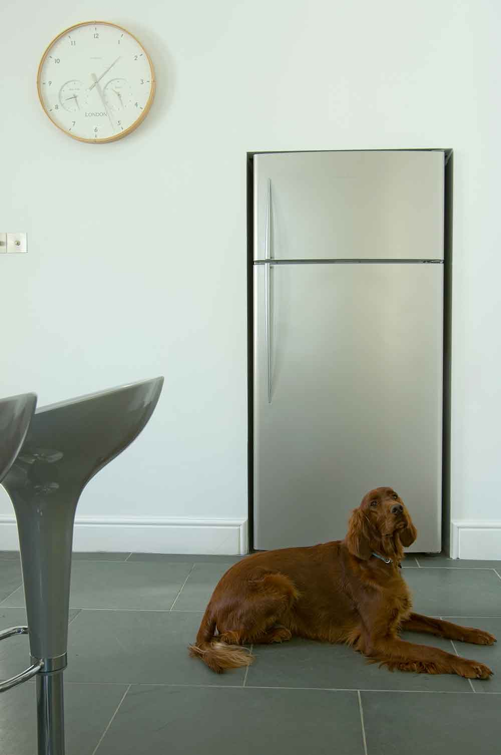 Bespoke minimal grey kitchen with dog
